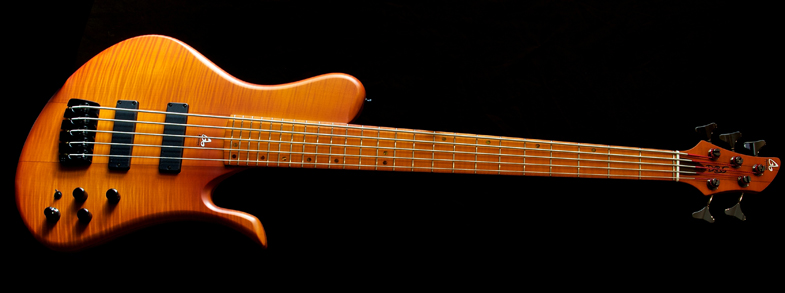 guitare 5 cordes