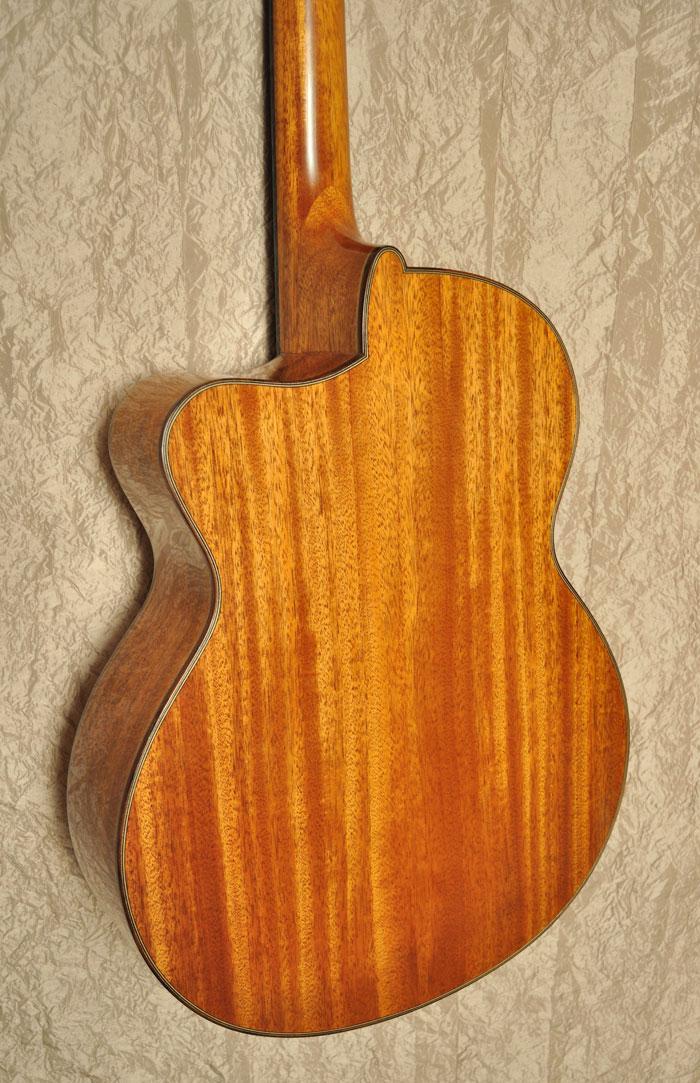 acheter une guitare Acoustique acier Fish  dans la boutique de laguitare.com