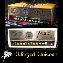 video guitare : Wunic Winged Unicorn Philippe Gay - Ampli Lilith, cab 212 Smoke & Fog, Ampli Picte au Sal avec laguitare.com