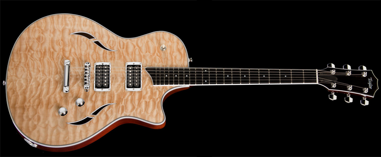 guitare taylor instruments de musique sur enperdresonlapin. Black Bedroom Furniture Sets. Home Design Ideas